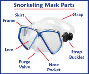 Best snorkel gear sets