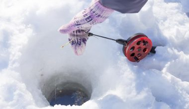 Best Ice Fishing Lines
