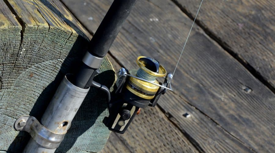 How To Buy The Best Saltwater Fishing Line