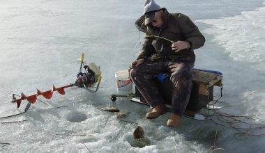 Do Cordless Drill Ice Augers Really Work? - ice fishing rod 1