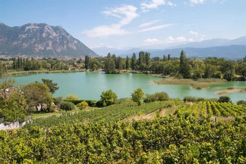 Carp Fishing in France And General Fishing Trips in France