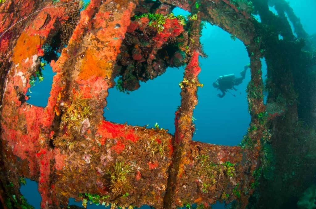 jane sea wreck diving
