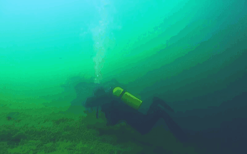 Muck Diving Tips