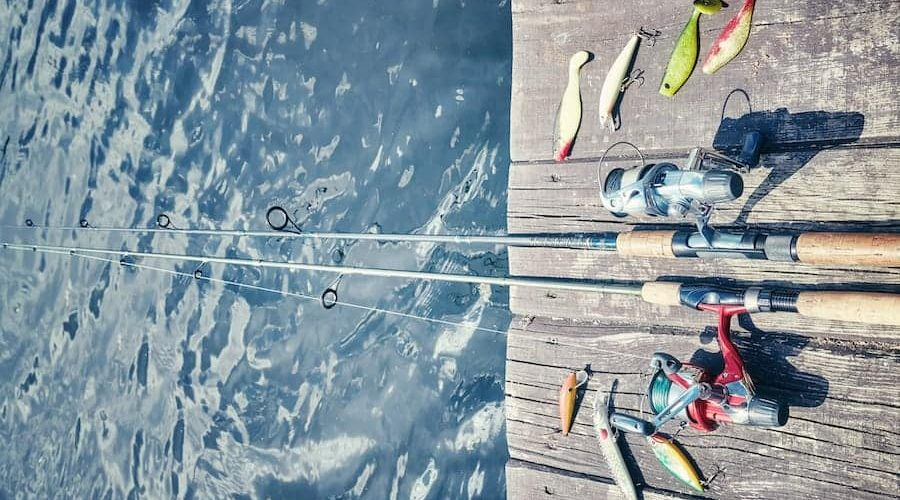 Best Swimbait Rods