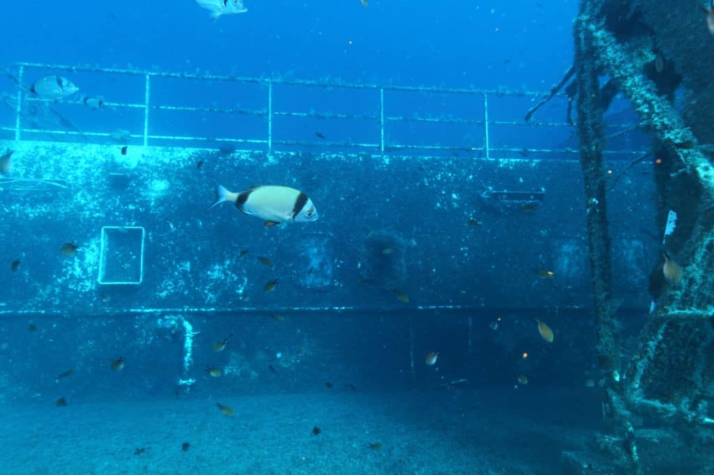 What Is Wreck Diving And How Can You Get Started - Zenobia ShipWreck near Paphos