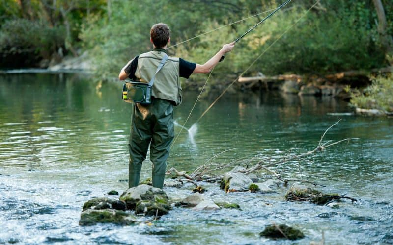 Best Fly Rods for Carp Fishing