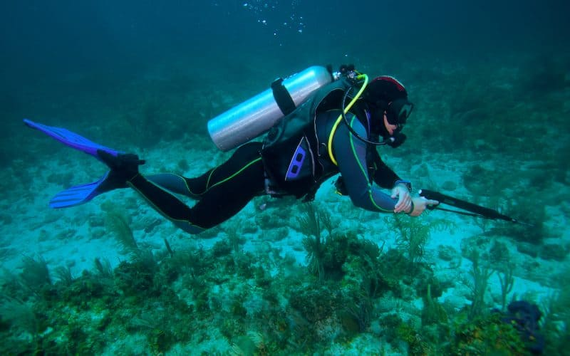 What Are The Best Spearguns for SpearFishing And Diving - Best Speargun