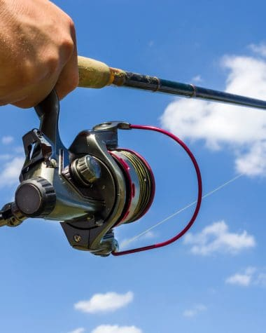Best Fluorocarbon Line for Spinning Reel