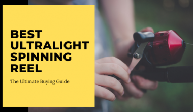 The Ultimate Buying Guide