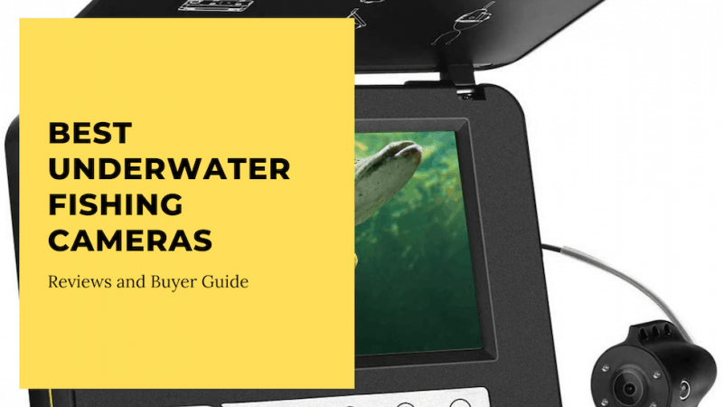 best underwater cameras for fishing
