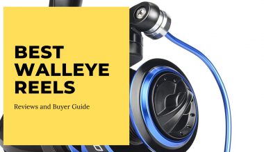 Best Walleye Reels
